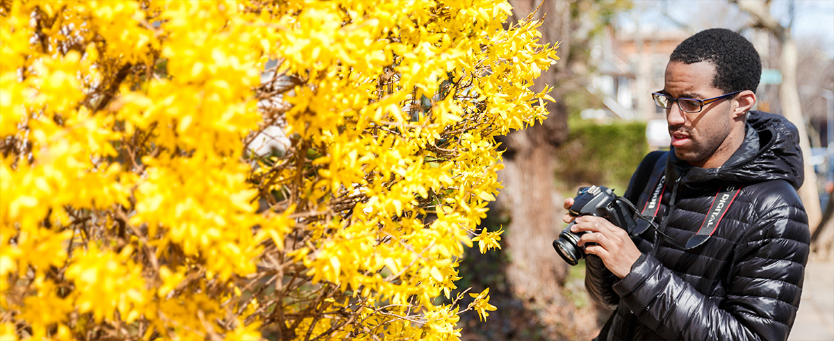 A man holding a camera in front of a yellow-flowered bush